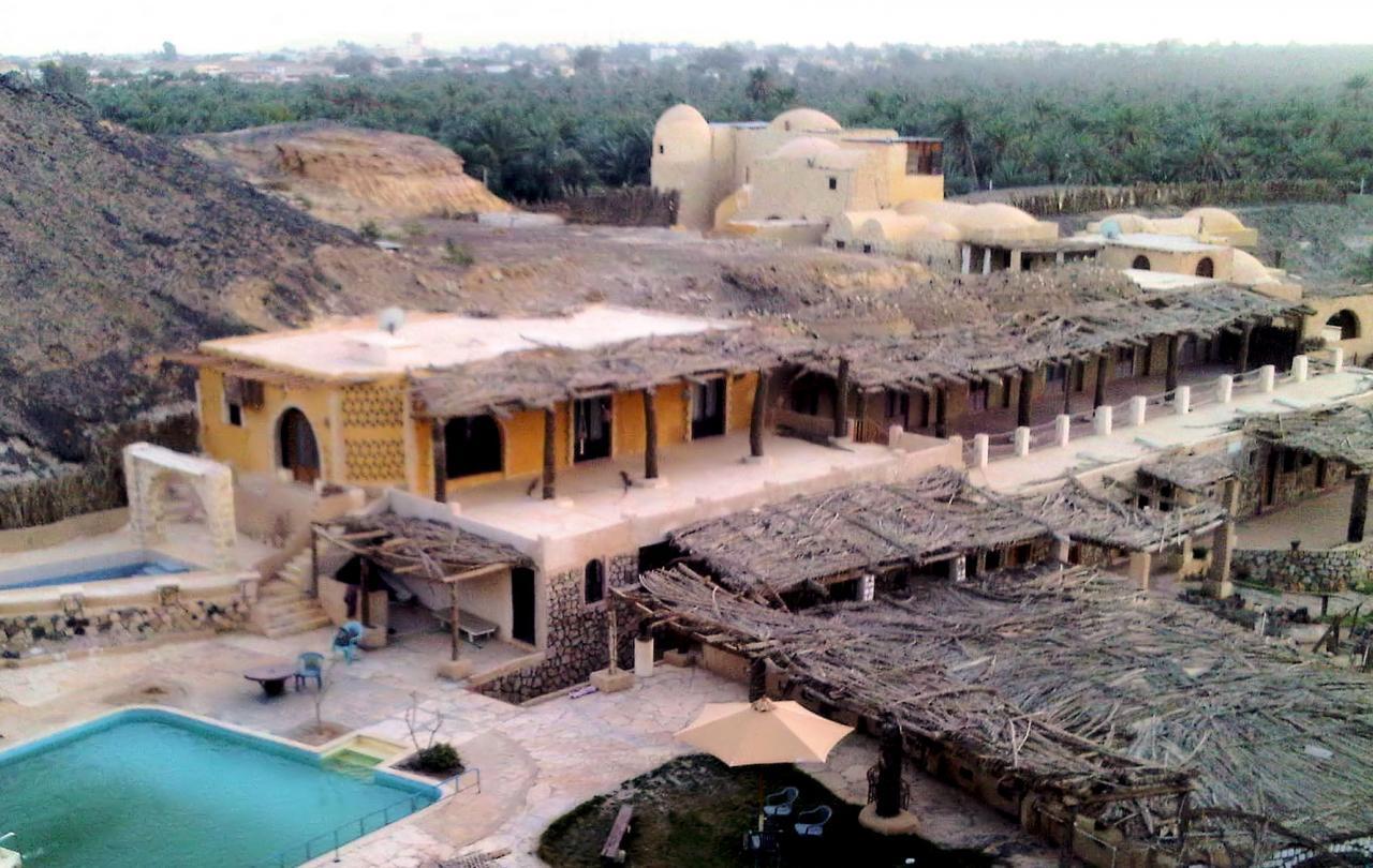 Un gite dans l'oasis de Bahareya