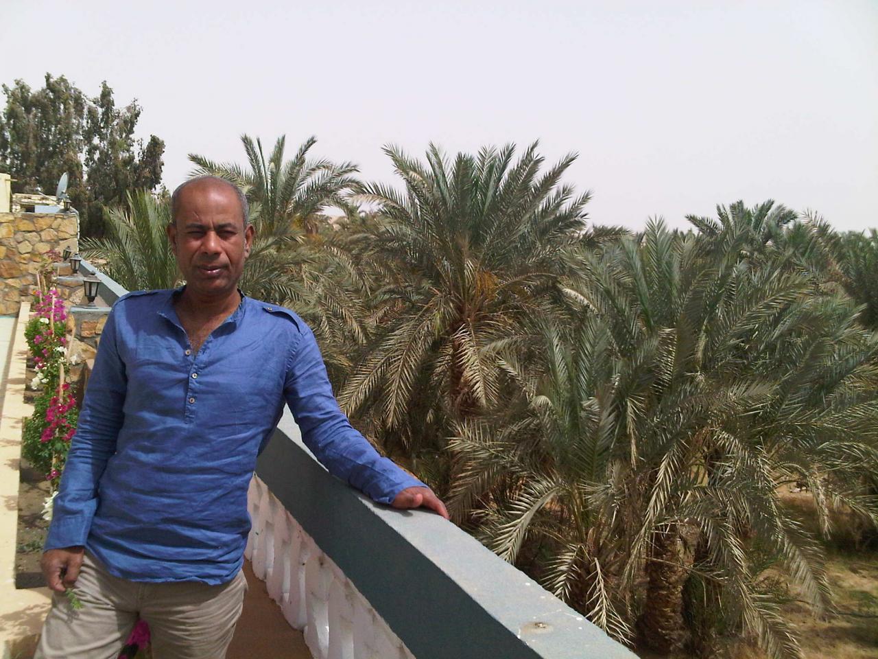 Hussein - Vue sur une palmeraie