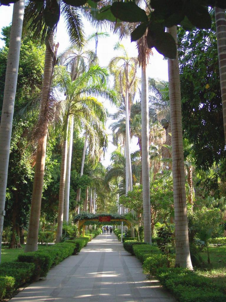 Egypte insolite 2 jours au sud de louxor for Restaurant jardin botanique