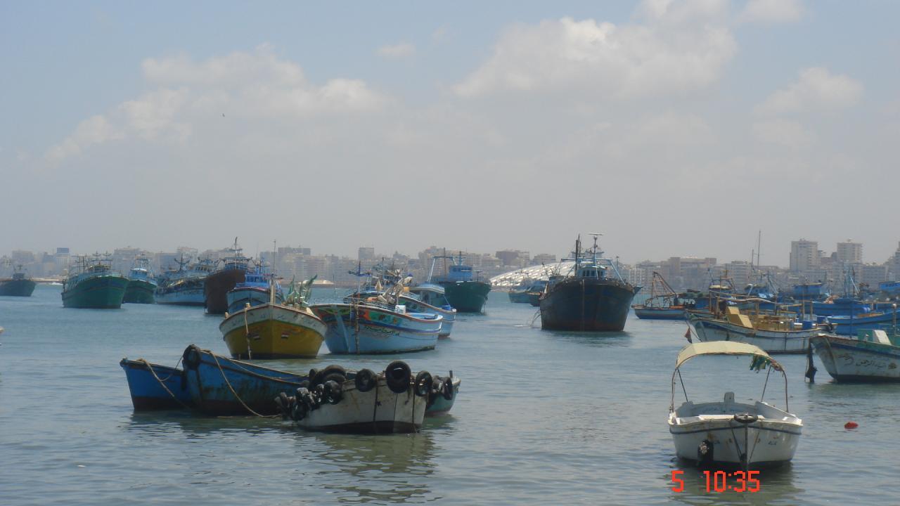 Le port d'Alexandrie
