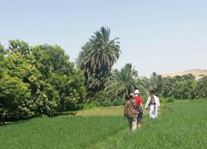 Campagne egyptienne