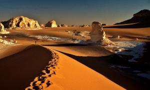 Desert blanc from oasis farafra