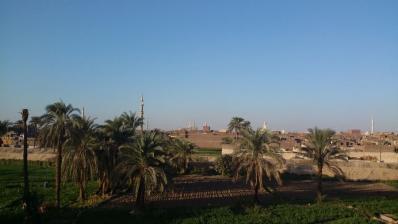Minia paysage egypte