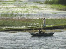 Nil paysan