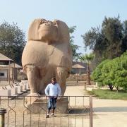 Statue de thot à Hermopolis